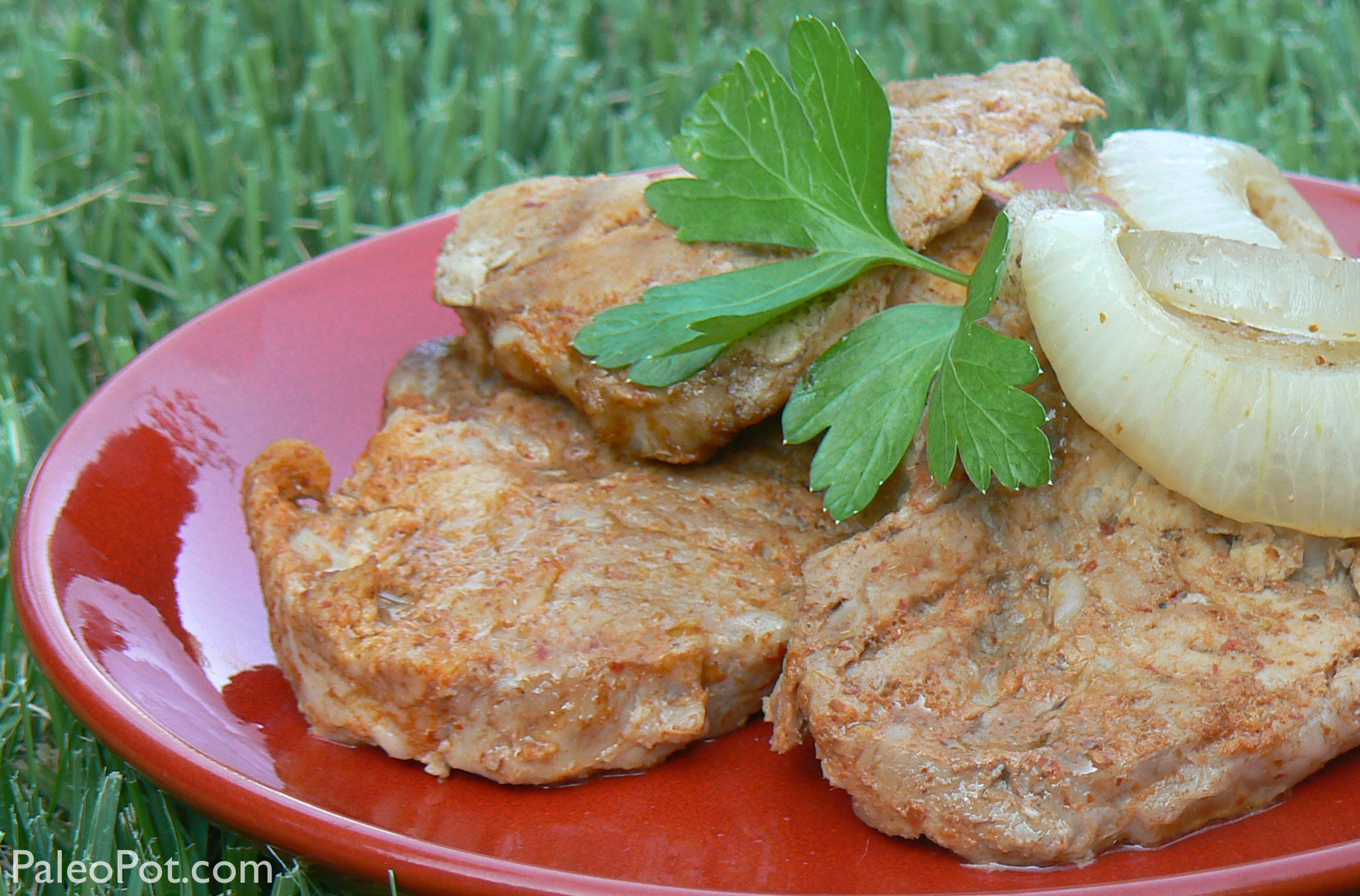 curry_pork_big