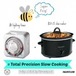 How to build a precise and optimal slow cooker setup for cheap.